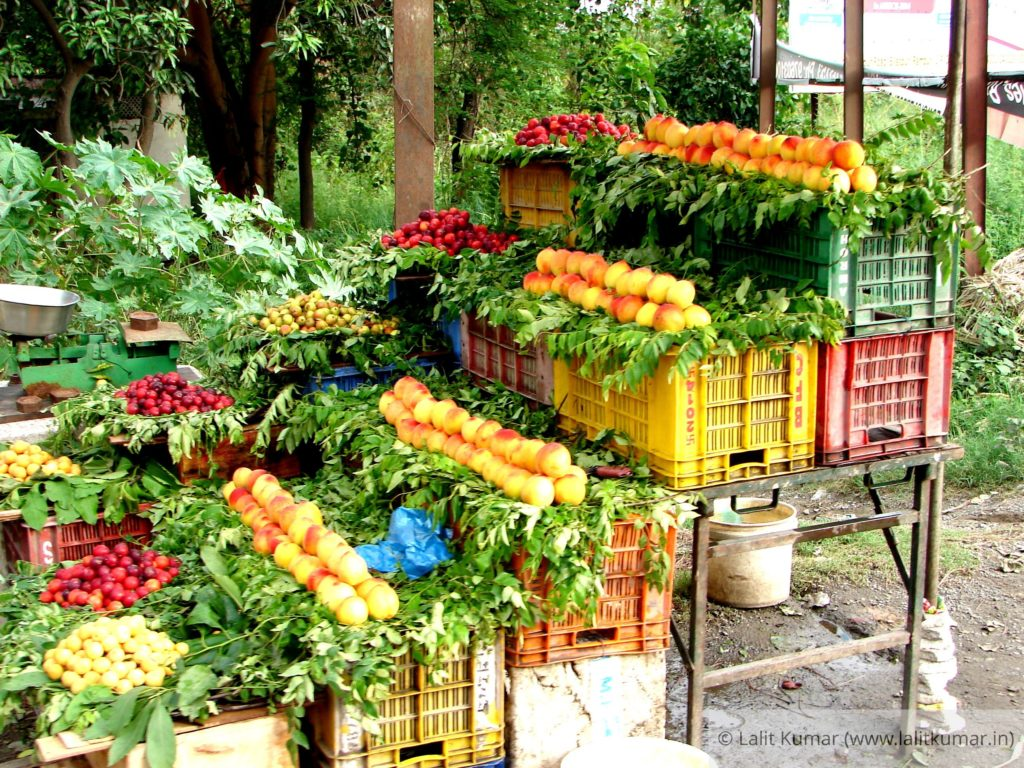 Beautiful fruit stalls on roadsides of Uttarakhand